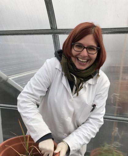 Ing. Diana Nebeská Ph.D.